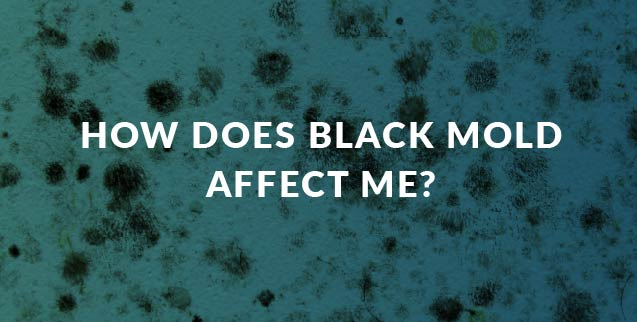 How Does Black Mold Affect Me?