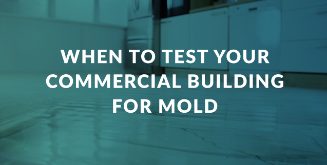 When to Test Your Commercial Building for Mold
