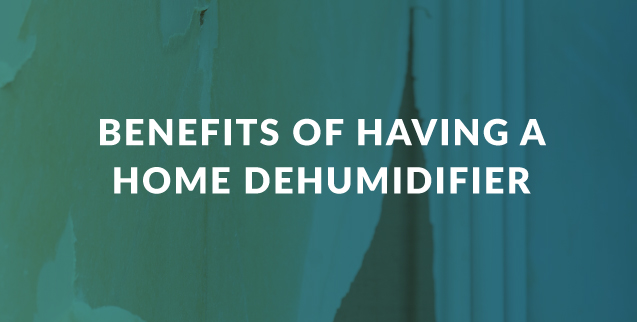 Benefits of Having a Home Dehumidifier