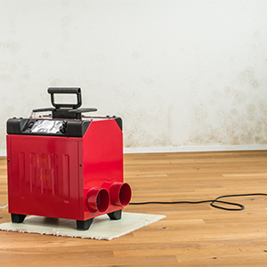 A dehumidifier, which can help prevent mold growth in Louisiana