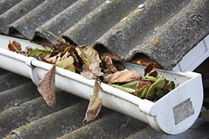 A clogged gutter which can cause a roof leak and mold growth