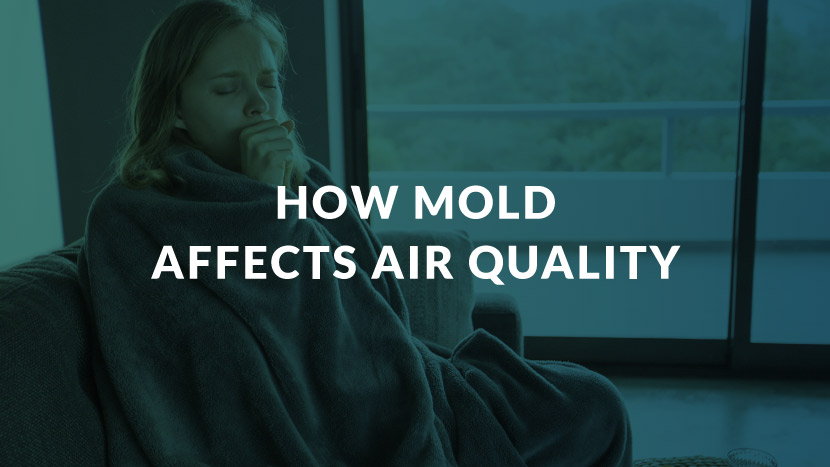 How Mold Affects Air Quality